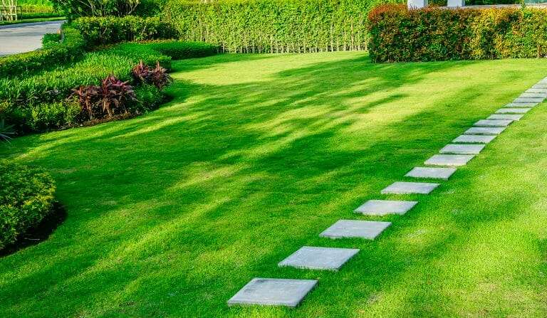 stone pathway surrounded by sod landscaping
