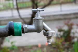 drought in georgia NG Turgf TifTuf