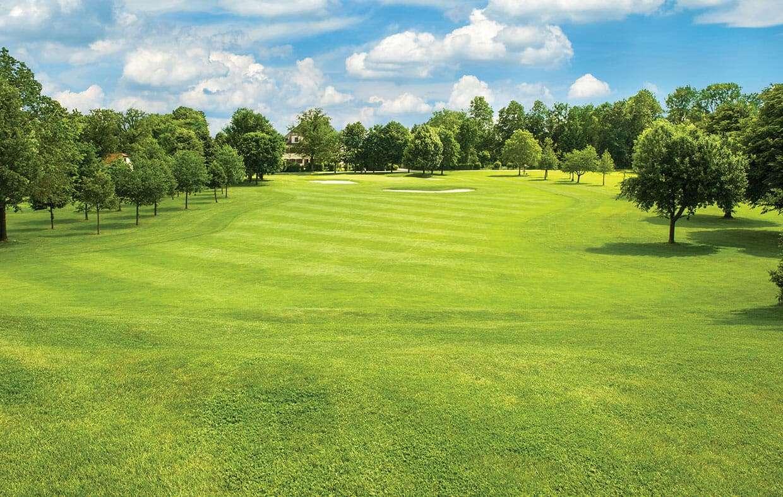 beautiful green sod on golf course