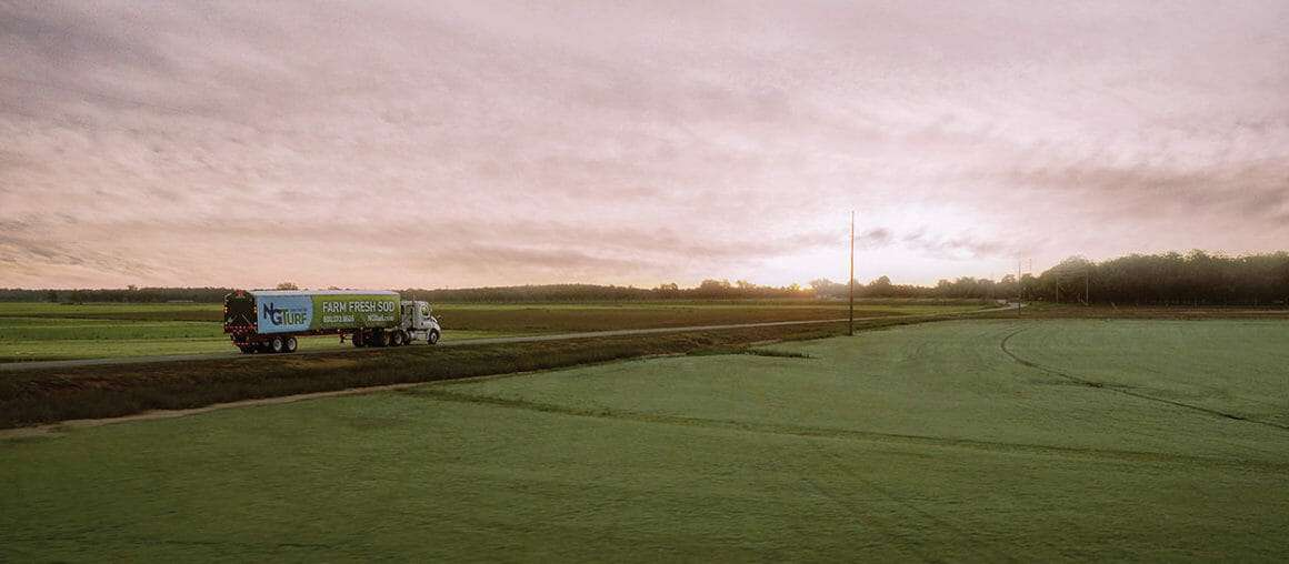 """NG Turf: Premium Sod from the """"Cutting Edge"""" of Turfgrass Research"""