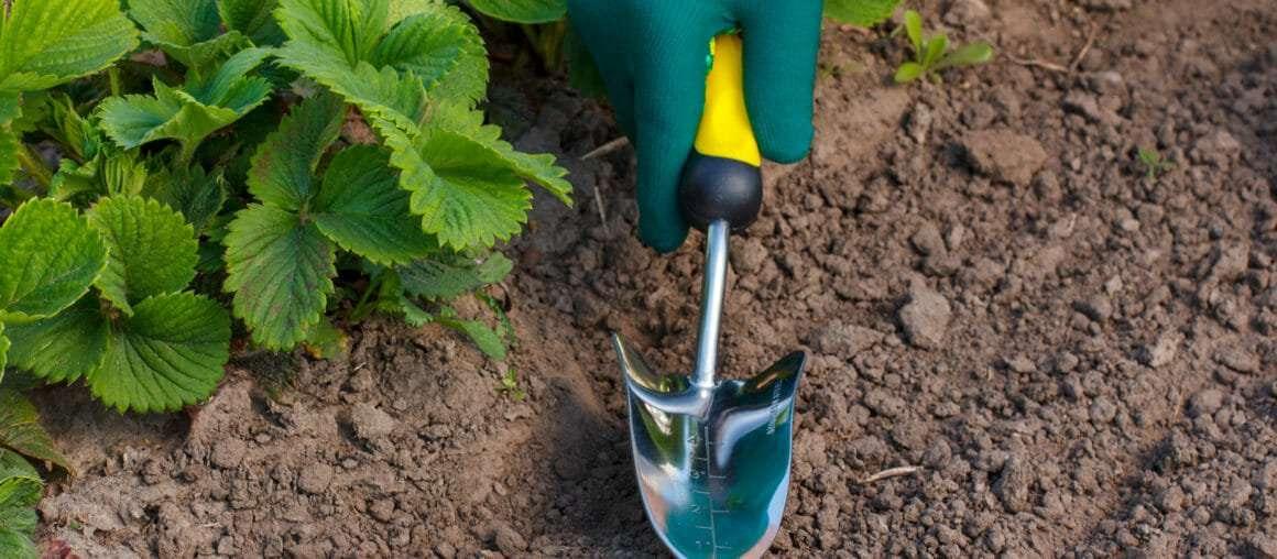Soil Testing 101