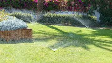 Tips For Watering Your Lawn In the Summer in Georgia