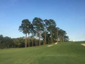 Atlanta's historic Bobby Jones golf course with freshly installed TifTuf Bermuda sod from NG Turf