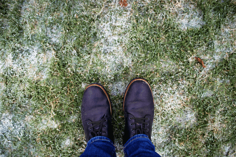 boots on winter lawn