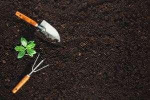gardening tools in fresh soil