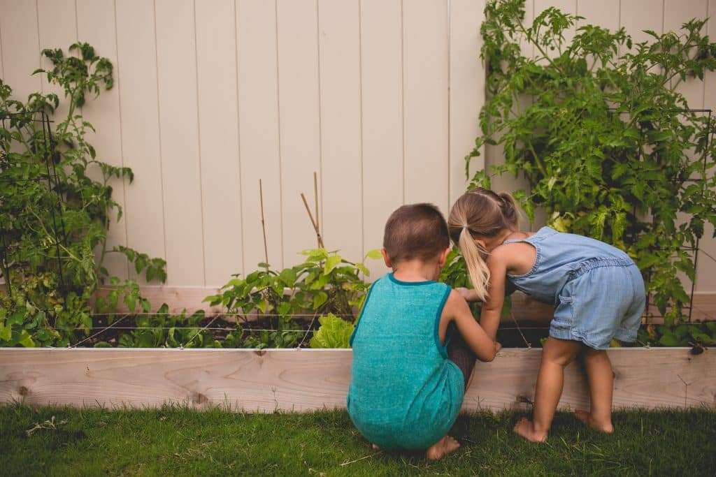 kids observing in the garden, playing outside
