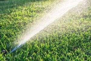 sprinklers irrigating lawn