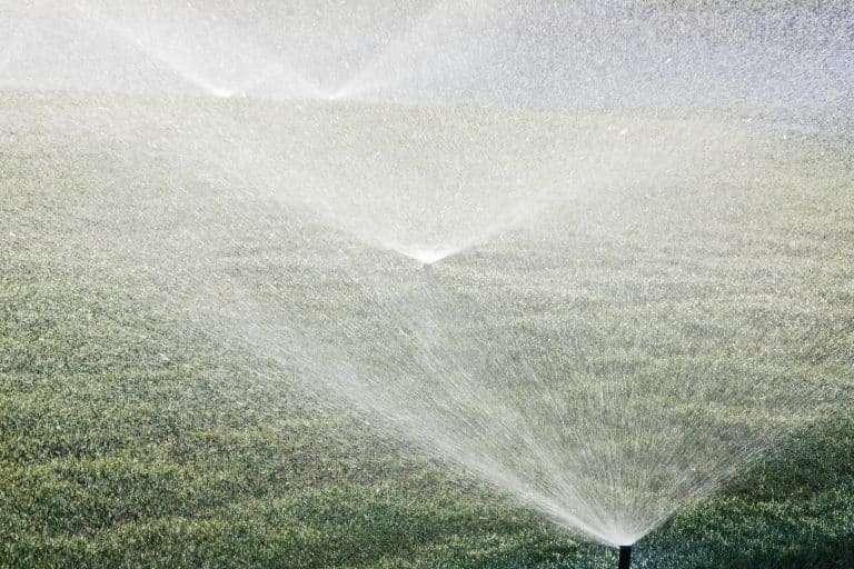 water sprinklers watering lawn in early morning