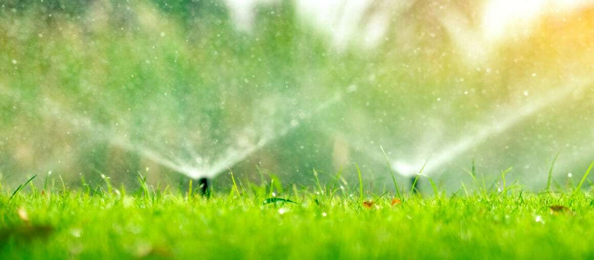 When and How Much to Water the Lawn