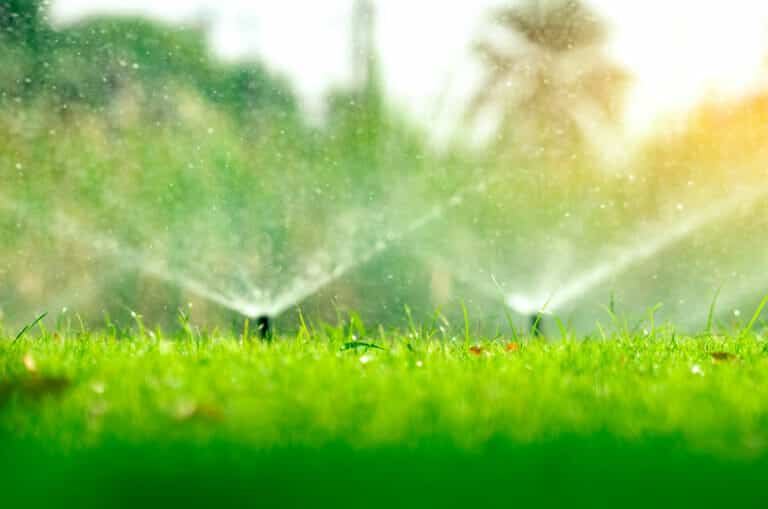 sprinklers watering lawn, best time to water