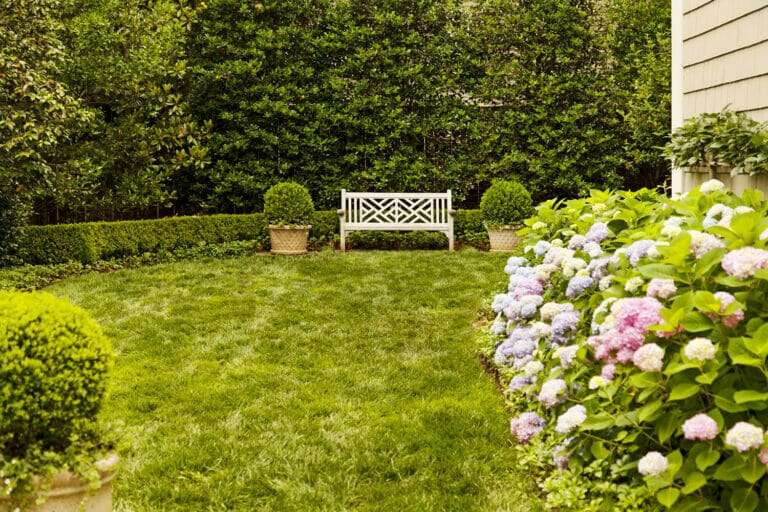 lawn of fescue sod with bench and flowers, sod supplier to professional landscaper concept