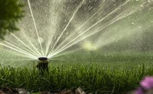 sprinkler system watering lawn, preparing lawn for winter