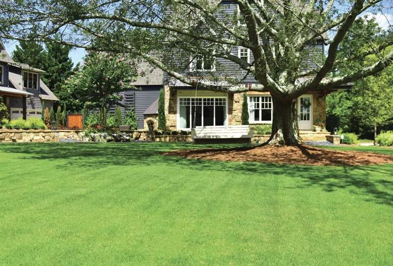 house with large front lawn with tree, where to soil test
