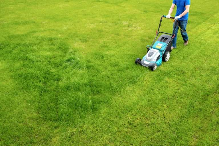 lawn service provider mowing lawn with push lawn mover