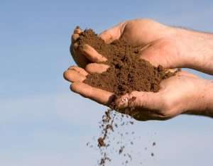 hand holding soil in air, step by step soil testing
