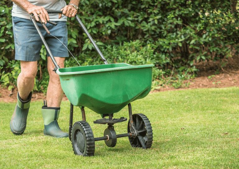 man placing fertilizer on his lawn