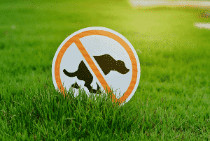 No dogs sign to prevent dog urine on grass