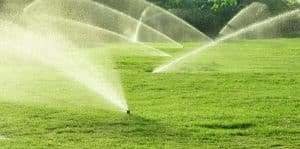 sprinkles watering lawn to prevent dollar spot