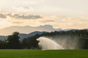 grass irrigation