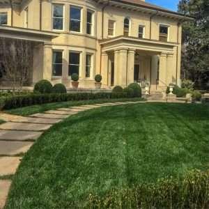 turf grass in Clarkesville, GA