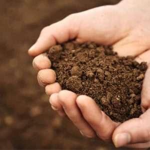 hand full of fresh soil, soil testing, Atlanta Georgia