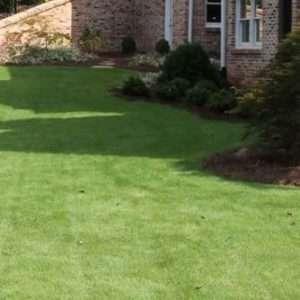 side lawn of tiftuf bermuda sod in Fort Valley, GA