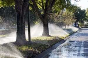 sprinklers along side road heavily watering grass and trees, lawn threats: over watering