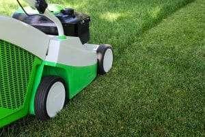 lawn mower cutting green lawn, lawn threat: Improper mowing