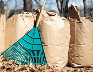 rake leaves in pile