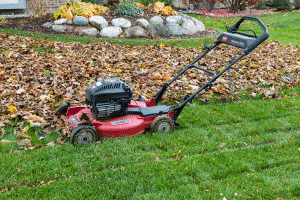 rake leaves with mulching mover