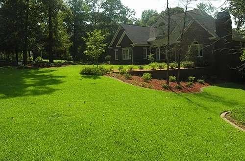yard of bright green sod