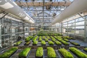 UGA turfgrass research facility