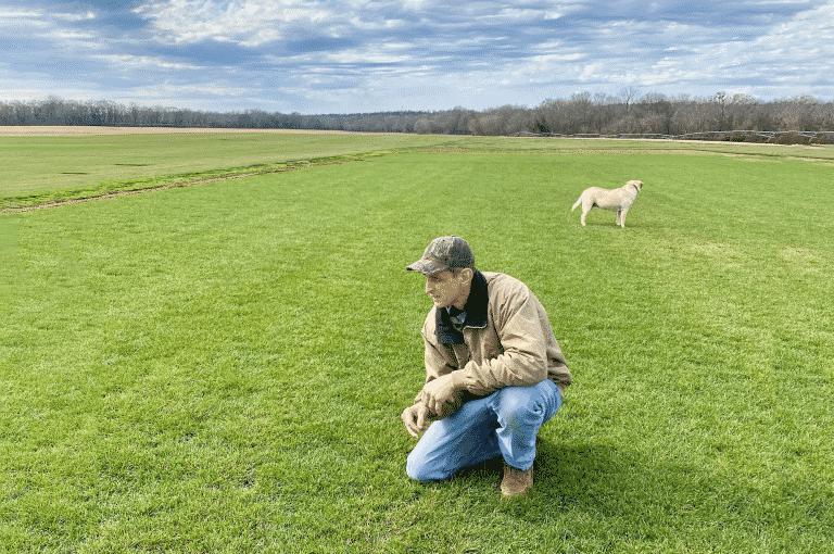 Mark McWhorter looking at premium sod field at NG Turf sod farm