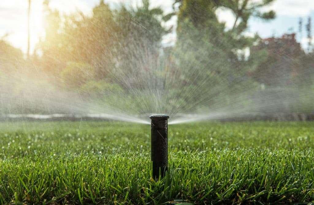 Automatic Backyard Garden Lawn Water Sprinkler bermuda sod maintenance