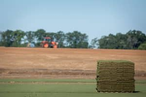 pallet of freshly cut premium sod with sod farm in background
