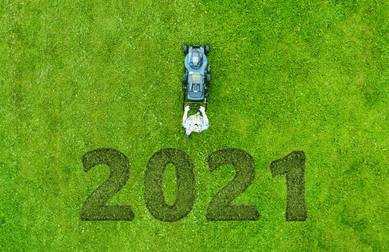 2021 new lawn