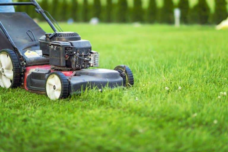 lawn mower height settings