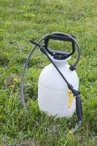 spray bottle of weed killer, zoysia grass maintenance