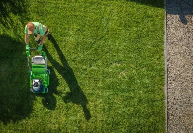 man mowing zoysia grass