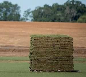 pallet of farm fresh sod from NG Turf, Atlanta, GA