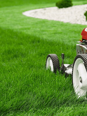 lawn mover mowing sod